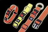 Karlie Art Sportiv Plus Halsband, 20 mm 40-55 cm, Reflek, orange, Verst.