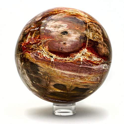 Astro Gallery of Gems Arizona Holzkugel in Regenbogenfarben, versteinertes Holz, 10,2 cm, 3,8 kg (Arizona Versteinertes Holz)