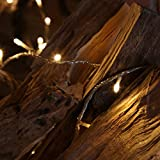 Indoor Fairy Lights - 40 Warm White LEDs - Clear Cable by Festive Lights Bild 8