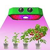 1000W LED Luci Per Piante, LED Grow Light per Piante Crescita,Piante da Interno, Fiori e Verdure, Piantagione Di Frutta,con Controlli VEG e BLOOM.