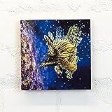 Holzbild 15x15 cm, Motiv: Fischig - Tiere, Fische, Wassertier, Meerestiere - Holz, Wandbild, Wohndekoration, Geschenk