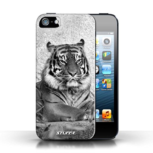 Stuff4 Hülle / Hülle für Apple iPhone 5C / Löwe Muster / Zoo-Tiere Kollektion Tiger