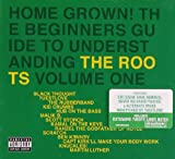 Home Grown Volume 1: The Startup Guide To The Roots' Greatest Jawns