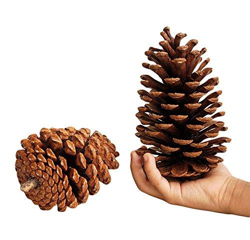Milopon Weihnachten Tannenzapfen Dekoration Flitter Weihnachtsbaum Dekorationen Ornament Home Decor (Braun) - Home Tannenzapfen