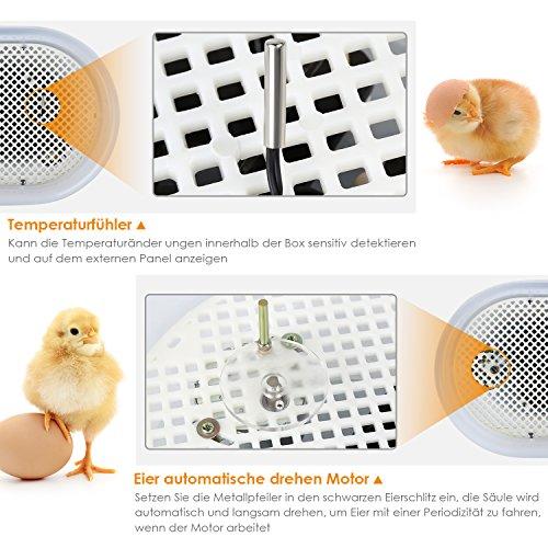 amzdeal Inkubator Brutkasten 9-12 Hühnereier - 3