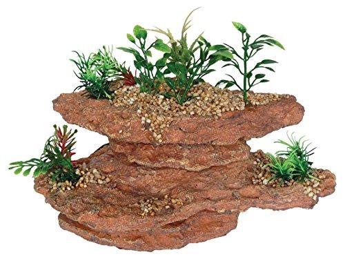 aqua-spectra-plataforma-roca-con-plantas-215-x-145-x-14-cm
