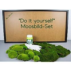 DIY Moosbild selber machen, Wandbilder selber kleben, Moosbilder selber gestalten, Do it Yourself Set Moos kleben Wanddeko selbst herstellen (Schwarz, 110x55 cm)