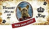 Holashirts Mallorca Hunde-Schild Metallschild Türschild Blechschild Warnschild Beispiel: French Bulli Bulldogge mit eigenem Foto und Wunschtext Größe 305x152mm
