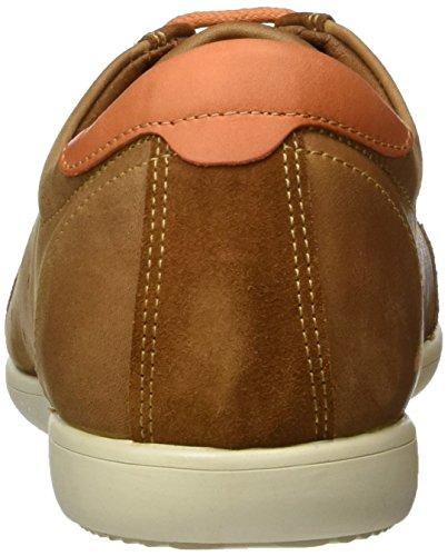 Panama Jack Noriega, Low-Top Sneaker homme brun (Bark)
