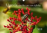 Uganda - im Herzen von Afrika (Wandkalender 2019 DIN A3 quer) -