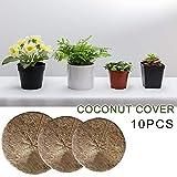 10 STÜCKE Pflanzenschutz Winter Frostschutz Überwintern Auf Balkon Kokosnuss Mulchabdeckung Mulchscheibe Pflanze Abdeckung Kokosmatte Für Gartenarbeit