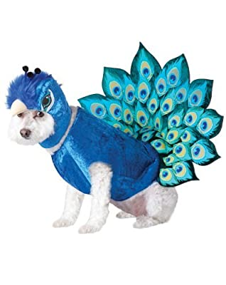 California Costumes Peacock Pet Costume from pupproperty dog clothing