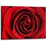 Rosa rossa Stampa su tela formato: 120 cm x 80 cm. Stampa artistica di elevata qualità come un murale. Più economico di un dipinto ad olio! ATTENZIONE! NO Poster