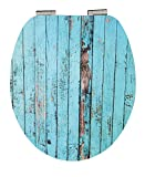 Eisl WC Sitz BLUE WOOD, High Gloss Dekor, mit Absenkautomatik, Motiv, EDHGBW01