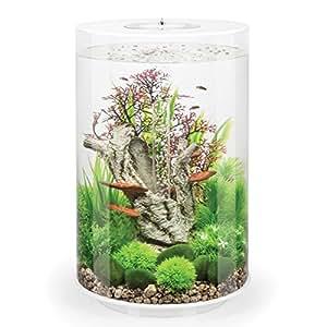 biorb aquarium in zylinder form mit mehrfarbiger led beleuchtung und fernbedienung 30 l. Black Bedroom Furniture Sets. Home Design Ideas