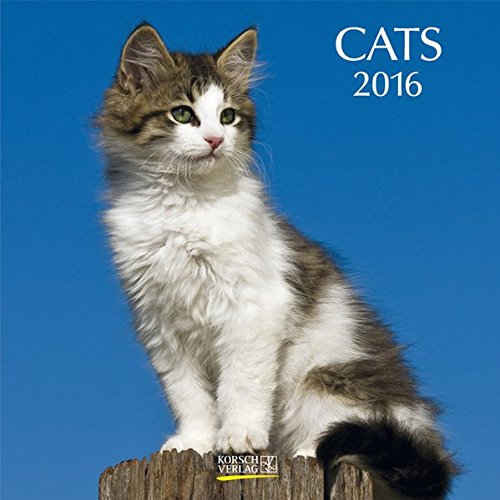 Cats 2016: Broschürenkalender mit Ferienterminen
