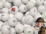 100 Lake Balls AAA AA