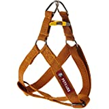 PetsLike Regular Harness, Small (Gold)