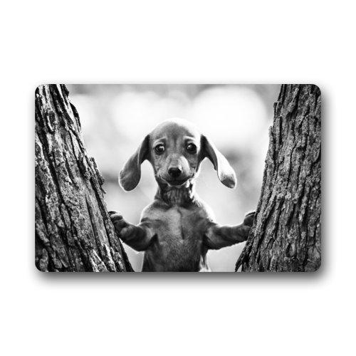 ghkfgkfgk Fashionable Cute Baby Dachshund Dog Grey Image Doormat - Quick Drying Door Mat