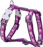 Red Dingo Hundegeschirr, gemustert, Größe S, 1,5cm breit, Farbe Breezy Love Purple