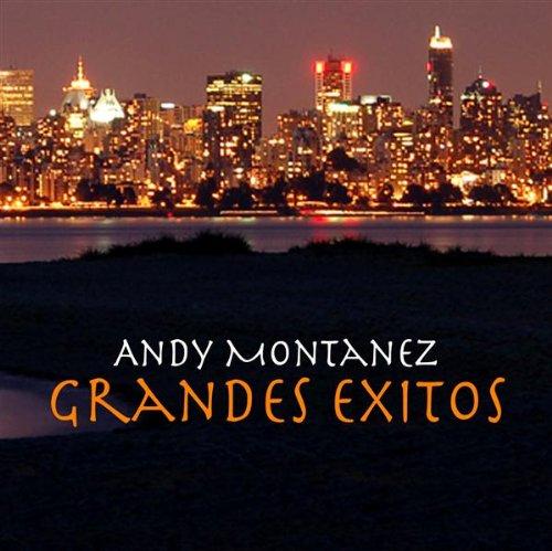 Aquí El Que Baila Gana - Andy Montañez