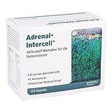 Adrenal-Intercell, 120 Kapseln