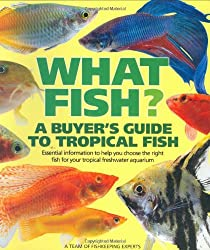 What Fish: A Buyer's Guide to Tropical Fish