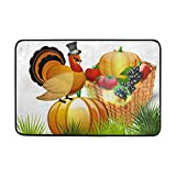 ruishandianqi Thanksgiving Basket Fruits Door Mat Carpets Indoor Outdoor Area Rugs Office Door Mat Non-Slip for Bedroom Bathroom Living Room Kitchen Home Decorative 23.6x15.7 inch Lightweight