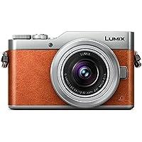 Panasonic Lumix Dc-gx800/GX850/Gf912–32/3.5–5.6Lumix G Vario ASPH Mega O.I.S.