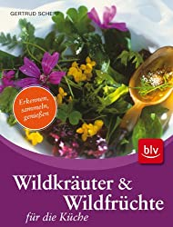 Wildkräuter & Wildfrüchte für die Küche: Erkennen, sammeln, genießen
