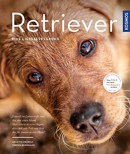Retriever - Eine Liebeserklärung -