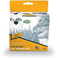 ourpets Kitty Cat Grass