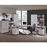 Komplett Büromöbel Set in lichtgrau, höhenverstellbare Schreibtische, 2 Rollcontainer & Aktenschränke abschließbar, Aktenregale Büroschrank Kombischrank