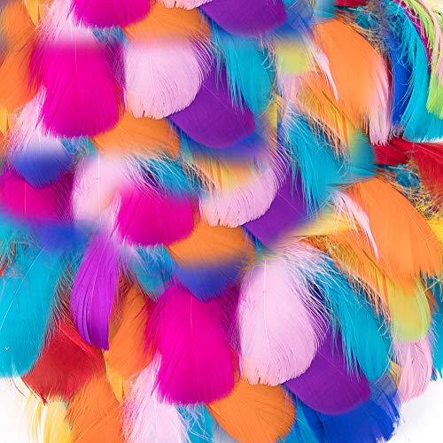 Federn zum Basteln, 300 Stück, natürliche Gänseglitter, weiche Indianerfedern, Zubehör für Heimwerker, Traumfänger, Basteln, Hochzeit, Party, Tischaufsätze für Baby-Party, Hüte, Kleidung Dekoration