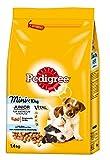 Pedigree Hundefutter Trockenfutter Junior Mini für kleine Hunde <10kg mit Huhn und Reis, 6 Beutel (6 x 1,4kg)