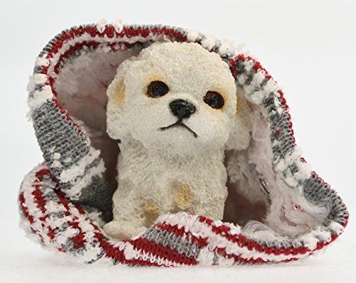 So süss; niedliches Malteser Hundebaby auf einer Decke, Dekofigur aus Kunststein, Welpe (Decke Chihuahua)