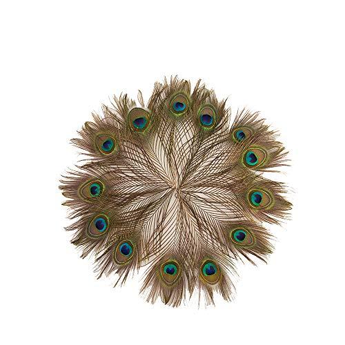 Lyanther Leegoal 50 natürliche Pfauenfedern, ca. 25,4-30,5 cm