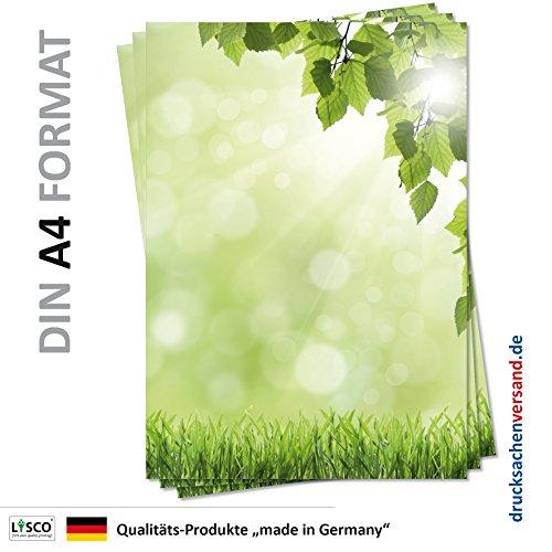 Motivpapier Briefpapier - Waldbach /über Steine gr/üne B/äume Natur Bach-5176, DIN A4, 25 Blatt