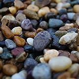 Sassolini da spiaggia irlandese, 20 kg