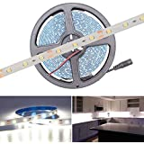 Water Proof Smd Strip Led Light With Free Output Driver & Power Cord, White