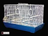 La-Habana-aves-jaula-con-separador-apto-para-Finches-Canarias-Budgies