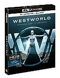 Westworld Stagione Uno: Il Labirinto (5 Blu-Ray 4K UltraHD + Blu-Ray)