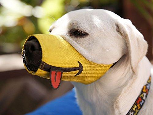 Cesar Millan lustiger Maulkorb™ - Maulkorb des Hundeflüsterers Cesar Millan