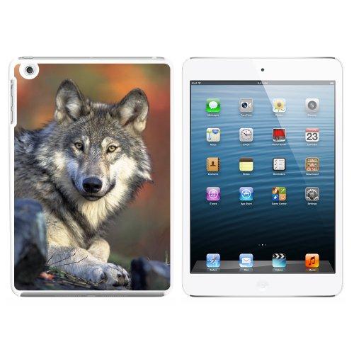 GRAY WOLF mit Fall Hintergrund Snap on Hard Schutzhülle für Apple iPad Mini 1. Generation–Weiß