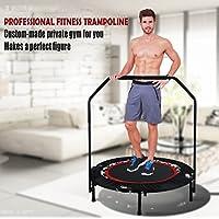 Preisvergleich für Swteeys Fitness Trampolin Sport Faltbar mit Haltestange Indoor Rebounder Gymnastik Trampolin für Erwachsene