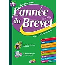 ANNEE DU BREVET 3E
