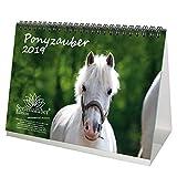 Ponyzauber · DIN A5 · Premium Tischkalender/Kalender 2019 · Pony · Pferde · Reiten · Fohlen · Hengst · Stute · Geschenk-Set mit 1 Grußkarte und 1 Weihnachtskarte · Edition Seelenzauber