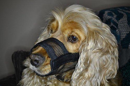 Maulkorb für Hunde–S, M, L, XL großartiges und einfaches Desing
