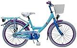 bicicletta bici bambina Disney Frozen 20 pollici 6 7 8 anni freno anteriore a V cestino portapacchi posteriore blu