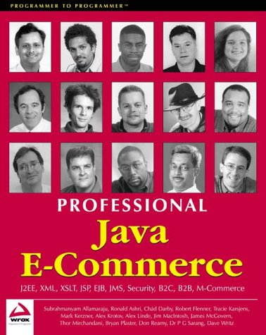 professional-java-e-commerce-programmer-to-programmer